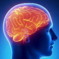 Глиома головного мозга продолжительность жизни