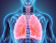 Плеврит легких при онкологии (в том числе при раке легких)