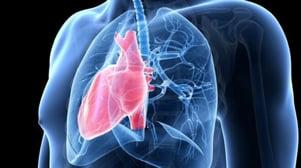 333bfb17beb3625b0ca06114a4a567a2 - Koji su osnovni simptomi hipertenzije