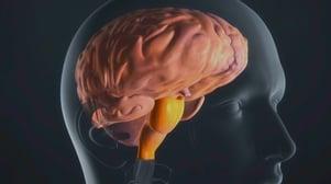 Лучевая терапия при глиоме зрительного нерва отзывы — Сам себе Доктор