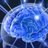 Врожденная и приобретенная эпилепсия: причины, признаки и отличия. Эпилепсия врожденная или приобретенная болезнь