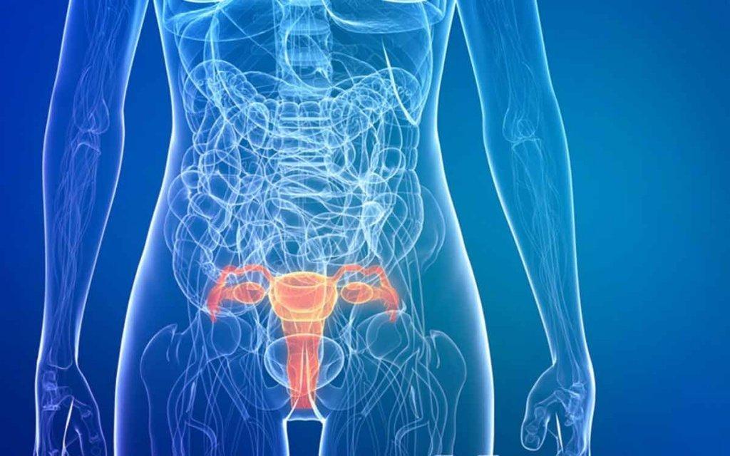 Низкодифференцированная, высокодифференцированная аденокарцинома эндометрия матки: прогноз жизни, лечение