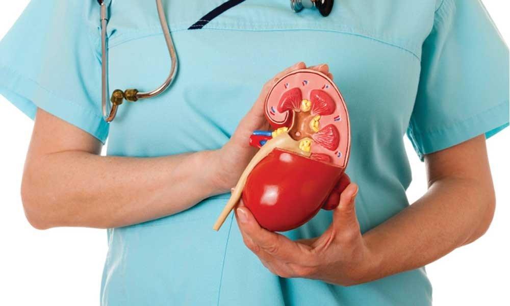 Рак почки: симптомы и лечение