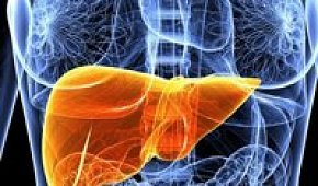 Рак печени: симптомы и лечение