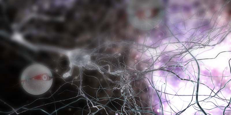Наноносители дают надежду в лечении опухолей головного мозга