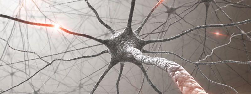 Новая 3D-технология восстановления сложных нервов