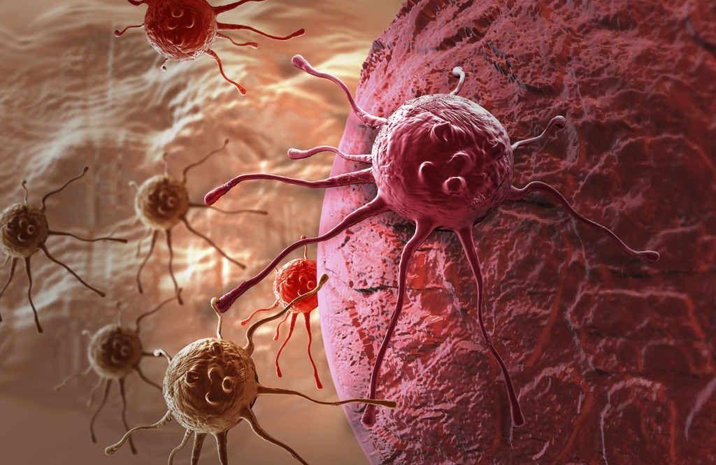 bakterii-rta-mogut-predskazat-bolezn-podzheludochnoj-zhelezy