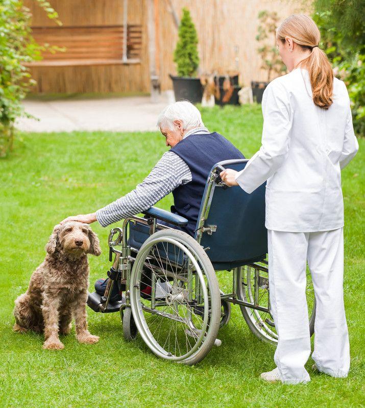 Изменения в спинномозговой жидкости помогают предсказать болезнь Альцгеймера