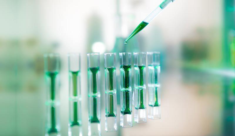 новые исследования белка