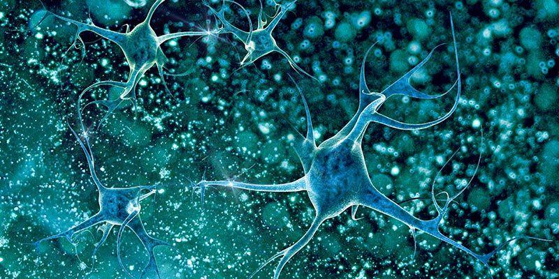 воспаление в мозге и болезнь Альцгеймера
